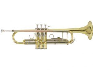 Trumpeta 300x225 - Domov